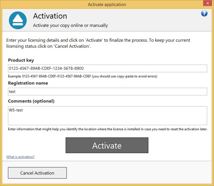 Backup4all 6 - Online Activation 2